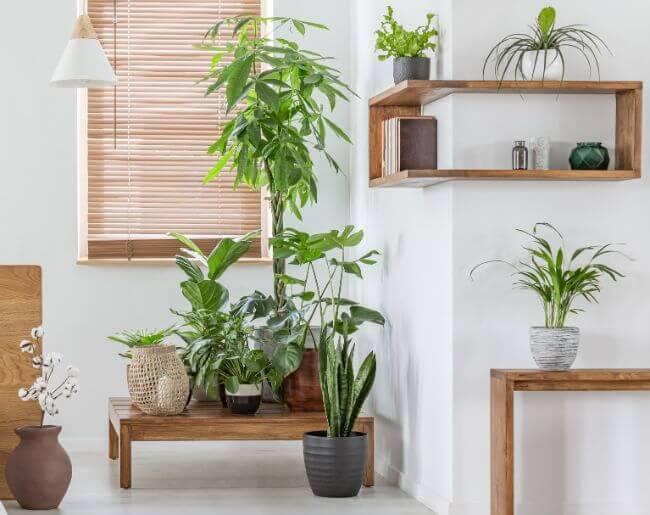 zaluzje-bambusowe-25-mm